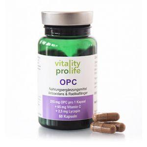 OPC aus Traubenkern- und Pinienrinden-Extrakt